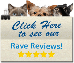 Click here to see our rave reviews!